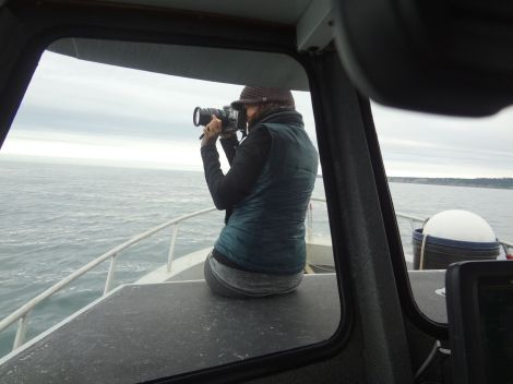 Yeap, I'm distracted already.  On the lookout for whales... Photo taken by Mark Denny.